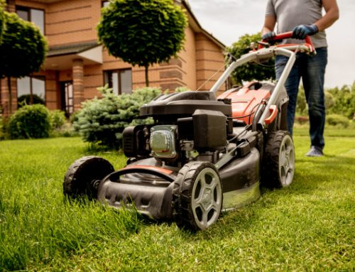 5 Best Walk Behind Mower Attachments that Every Mower Man Want